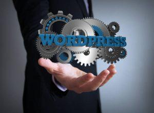 Funkcjonalności podstawowego WordPressa